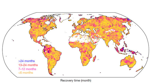 Global patterns of drought recovery time, in months.