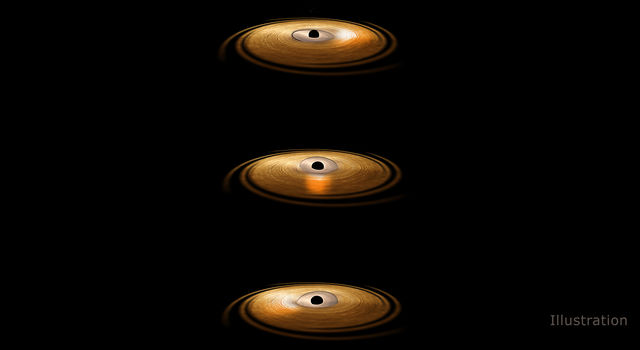 Black Hole with 'Wobbling' Disk