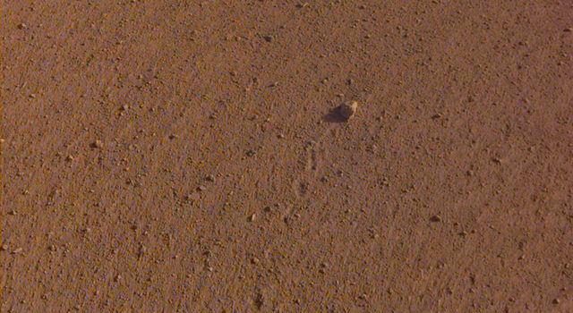 Rock on Mars