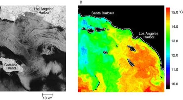 Coastal eddies off the Southern California coast (left), contrasted with local sea surface temperatures (right).