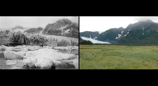 The retreat of Pedersen Glacier in Alaska. Left: summer 1917. Right: summer 2005.