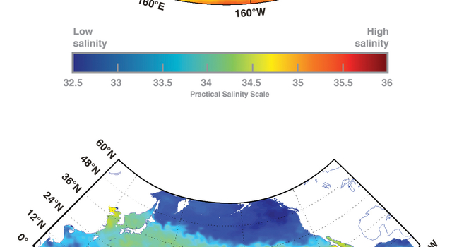 A comparison of the level of detail available from averaged historical in-water ocean surface salinity data