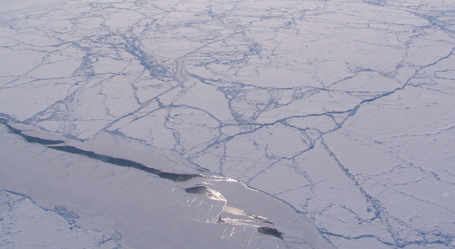 Sun glint off a sea ice lead in an otherwise heavily ridged ice pack, Canada Basin (Arctic Ocean).