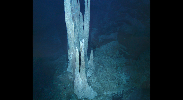 This image from the floor of the Atlantic Ocean shows a collection of limestone towers known as the 'Lost City.'