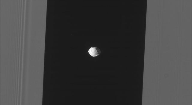 This raw, unprocessed image of Saturn's moon Pan was taken on March 7, 2017.