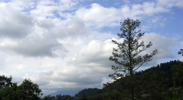 Clouds play an important role in Earth's climate.