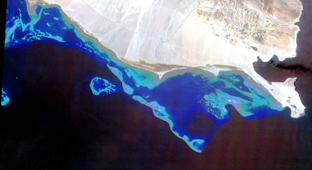 Coral reefs in the Red Sea as seen by ASTER