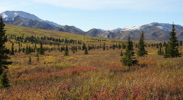 JPL's Carbon in Arctic Reservoirs Vulnerability Experiment