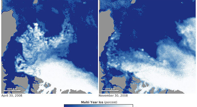 Maps of multiyear sea ice coverage of the Arctic Ocean