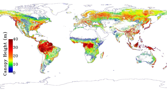 Global map of forest height produced from NASA's ICESAT/GLAS, MODIS and TRMM sensors.