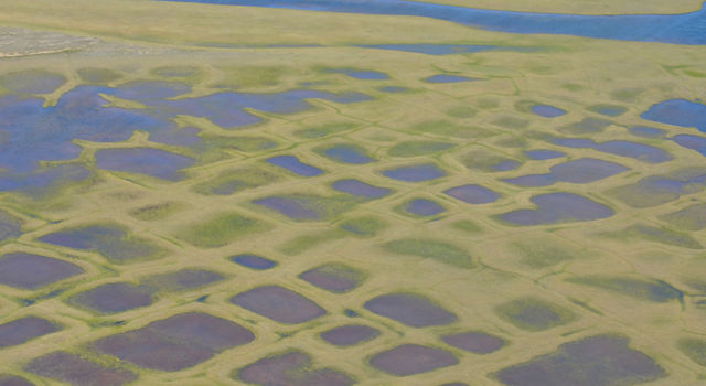 This photo taken during the CARVE experiment shows polygonal lakes created by melting permafrost on Alaska's North Slope.