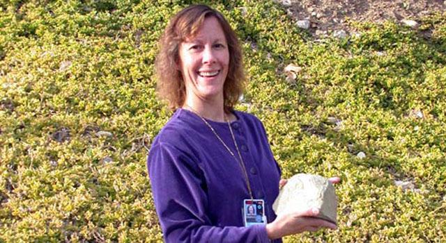 Dr. Joy Crisp