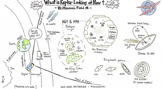 Cartoon drawing of What Kepler is Looking at Now