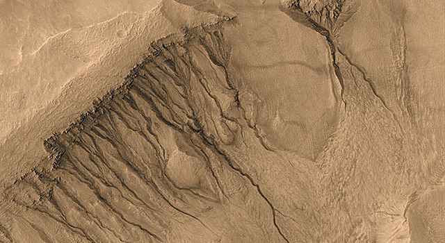 gullies on wall of meteor impact crater in Newton Basin, Mars
