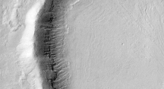Gullies on Martian Crater