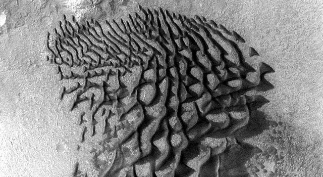 Mars Odyssey All Stars: Bunge Crater Dunes