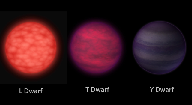 A Trio of Brown Dwarfs