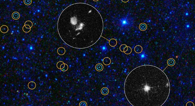 Exposing Black Holes Disguised in Dust