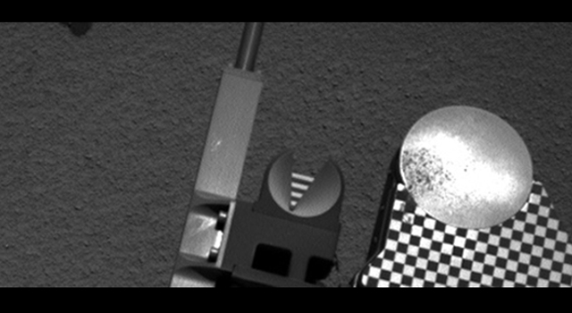Scooped Material on Rover's Observation Tray