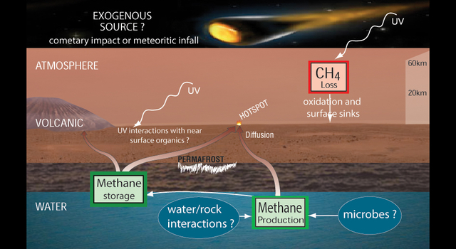 Potential Sources and Sinks of Methane on Mars