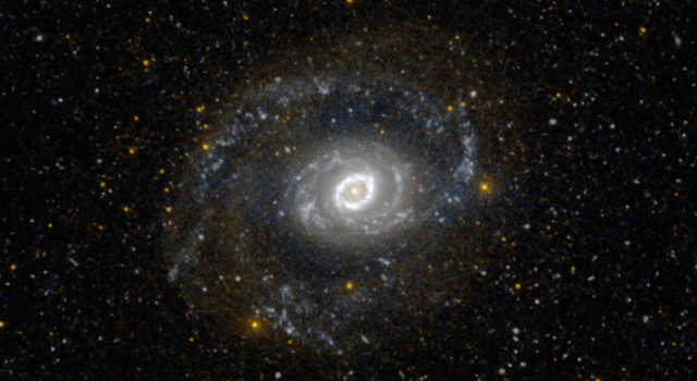 This image from NASA's Galaxy Evolution Explorer (GALEX) shows Messier 94, also known as NGC 4736, in ultraviolet light
