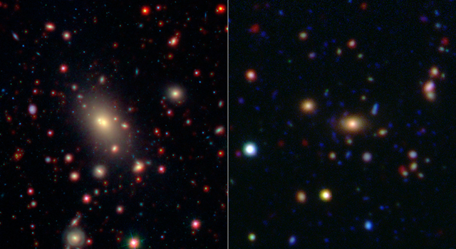 This image shows two of the galaxy clusters observed by NASA's Wide-field Infrared Survey Explorer (WISE) and Spitzer Space Telescope missions
