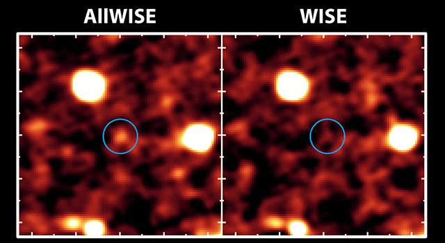 AllWISE Brings Galaxies Out of Hiding