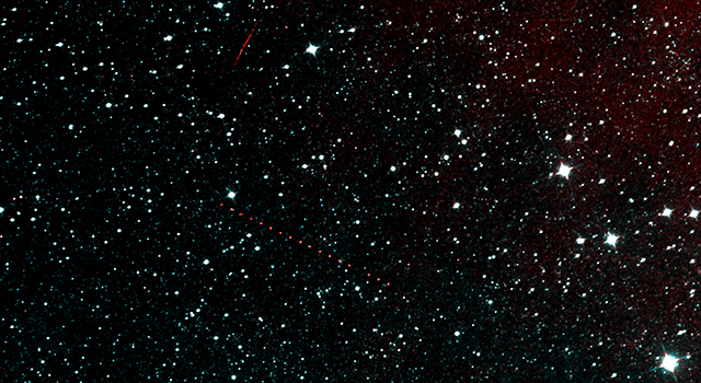 NEOWISE's Next Light