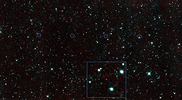 NEOWISE's New Find