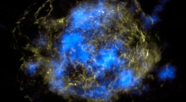 Radioactive Core of a Dead Star
