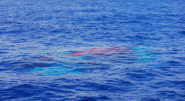 LDSD Chute Beneath the Surface