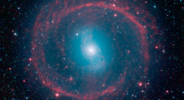 Ring of Stellar Fire