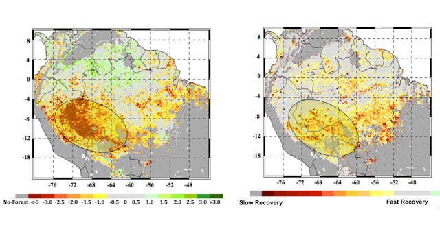 At left, the extent of the 2005 megadrought in the western Amazon rainforests during the summer months of June