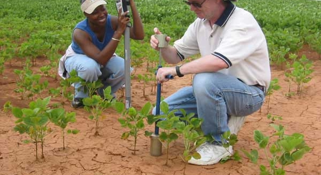 scientists sampling dry soil