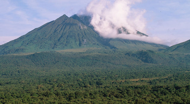 Sabinyo volcano and thick forest in Virunga National Park