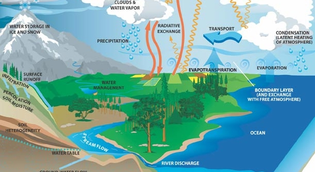 major components of the global water cycle