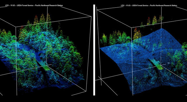 These before-and-after lidar images from the King fire