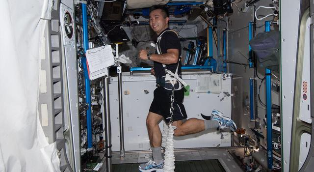 An astronaut runs on a treadmill on the International Space Station with bungees holding him in place.