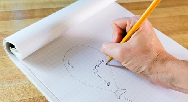 """Inside a drawing of a balloon, an arrow is shown pointing down. Above the arrow, a person writes the word """"gravity."""""""