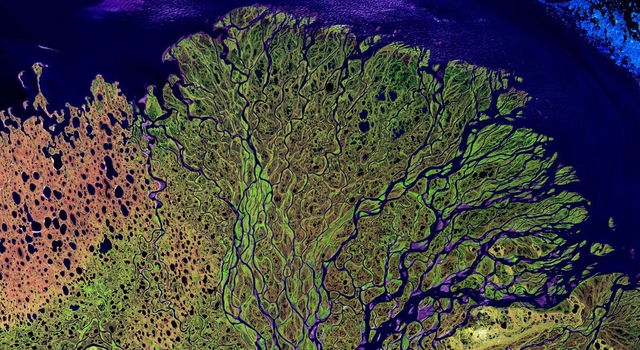 This satellite image of the intricate branches of the Lena River in Russia is an explosion of colors