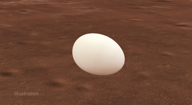 Illustration of an egg on Mars