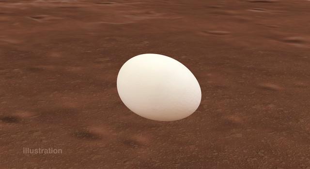 Illustration of an egg on Mars