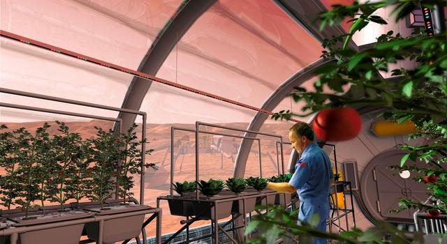 Artist's rendering of an astronaut farming inside a habitat on Mars
