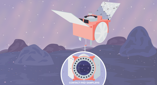 In this cartoonish illustration, OSIRIS-REx descends on a purple, rocky surface. An inset shows a circular device with small circular pads. An arrow points to one of the pads and identifies it as a collection pad.