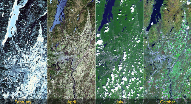 Vegetation Patterns Around Lake George, New York