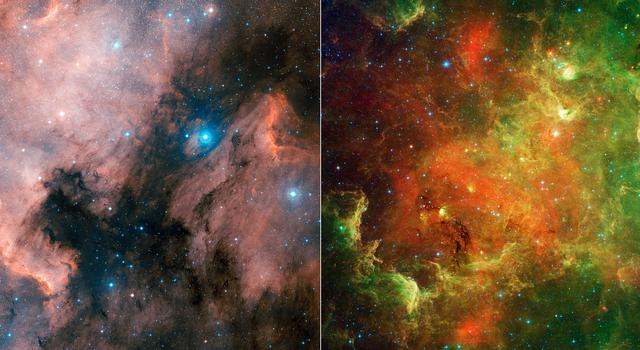 Stellar Family: The North American Nebula